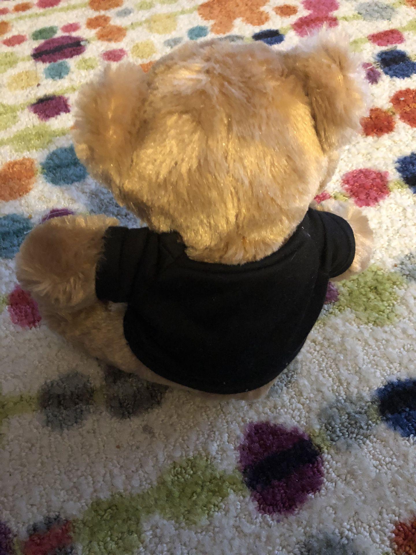 Hitwear teddybear excellent condition