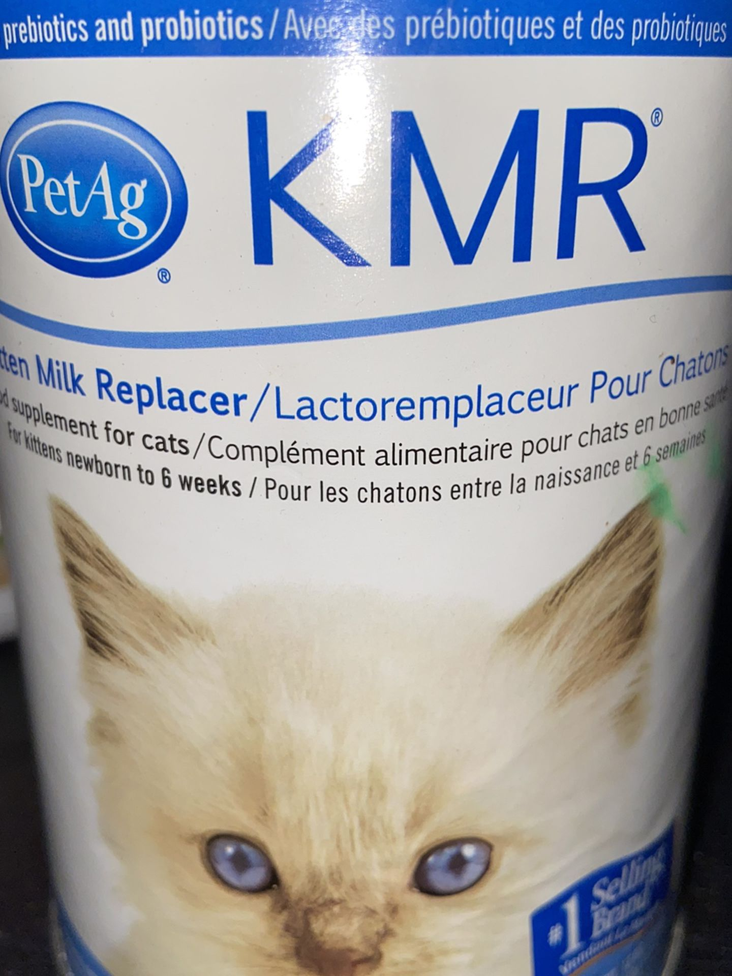 Free Kitten Formula