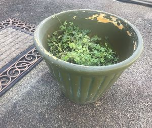 Worn Planter - about a foot tall for Sale in Sterling, VA