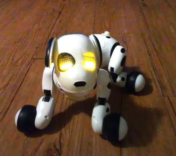 2012 ZOOMER the Robotic Dog for Sale in Spring Valley, CA - OfferUp