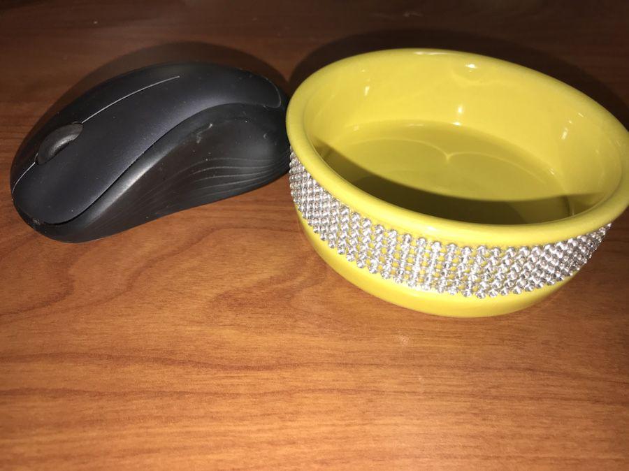 Gibson 4.5 inch Decorative Ceramic Pet Bowls (Pair)