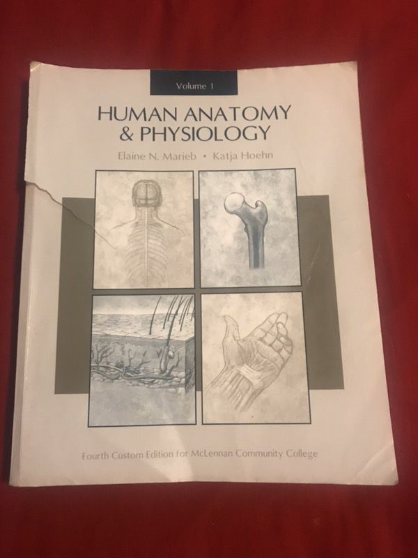 Human anatomy and physiology 1 book (Cars & Trucks) in Waco, TX ...