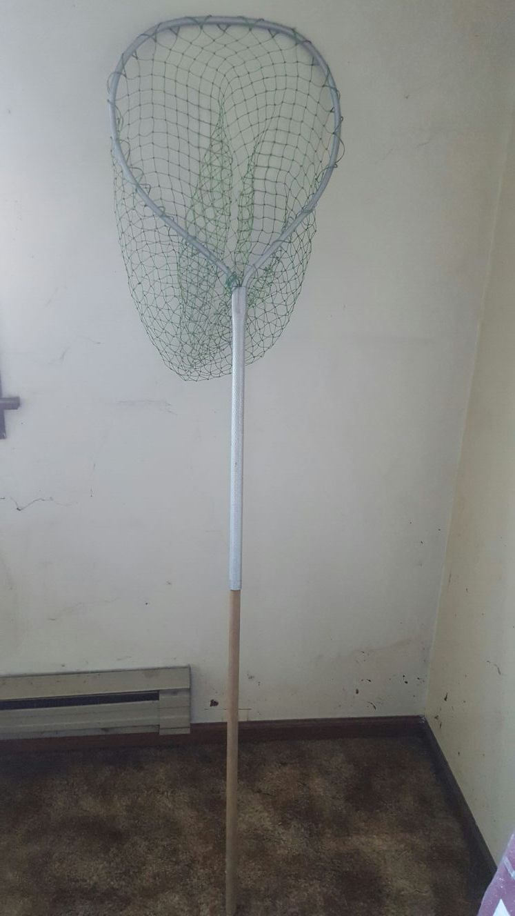 Fishing net with pole