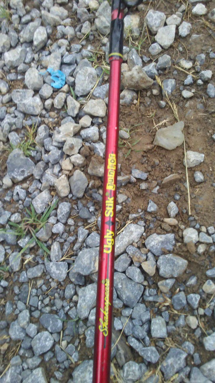 Ugly stick junior rod