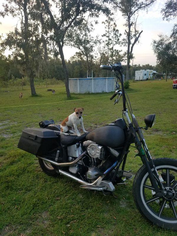 1992 Harley Softail 80in Evo