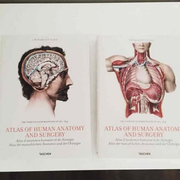 Bourgerys Atlas Of Human Anatomy And Surgery For Sale In Dearborn