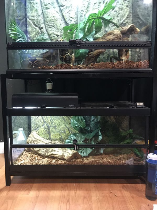 Large Wide Exo Terra Reptile Terrarium Vivarium 36x18x18 Tank With