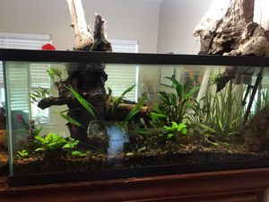 New and Used Fish tanks for Sale in Birmingham, AL - OfferUp