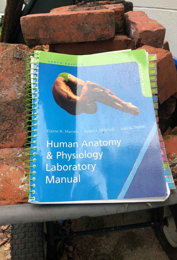 Human anatomy and physiology lab manual (Books & Magazines) in ...