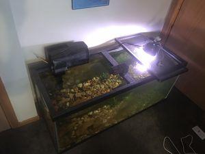 Photo 75 Gallon Fish tank/Aquarium with filter, rocks, feeder
