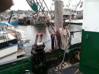 Ships Ahoy!  Thumbnail