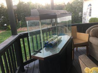 50 Gallon Fish Tank Thumbnail