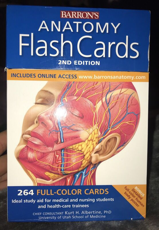 Human Anatomy Flash Cards For Sale In Tulalip Wa Offerup
