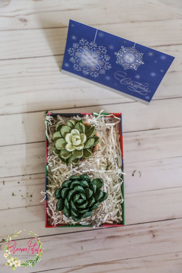 Gift Box With Succulents Plants In A Rustic Succulent Teacher Birthday For Her Assorted