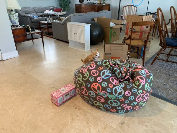 Terrific Large Pottery Barn Bean Bag Chair Monogrammed With The Name Stephanie And A Peace Alarm Clock For Sale In Hillsboro Beach Fl Offerup Bralicious Painted Fabric Chair Ideas Braliciousco