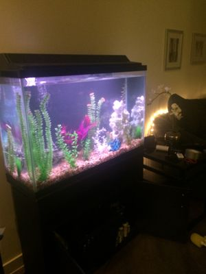 Fish Tank for Sale in West Hollywood, CA