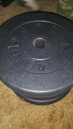 Photo 40 lb weight plates!