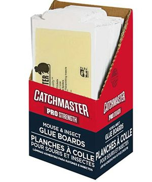 CatchMaster 75M Bulk Mouse and Insect Glue Boards, 75 Pack for Sale in Washington, DC
