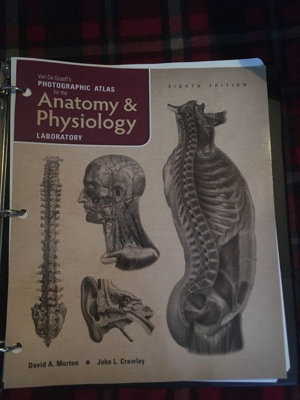 Anatomy And Physiology For Sale In Tacoma Wa Offerup