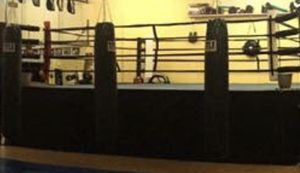 Boxing ring 20x20 for Sale in Casselberry, FL