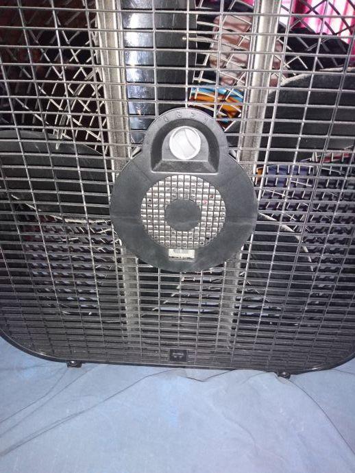 Holmes box fan
