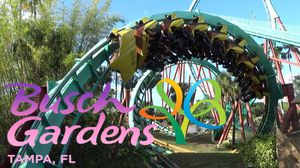 Looking for 3 tickets for Island, seaworld, Bush for Sale in Orlando, FL
