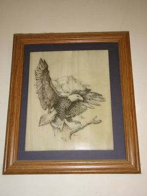 ivory Eagle portrait for Sale in Pittsburgh, PA