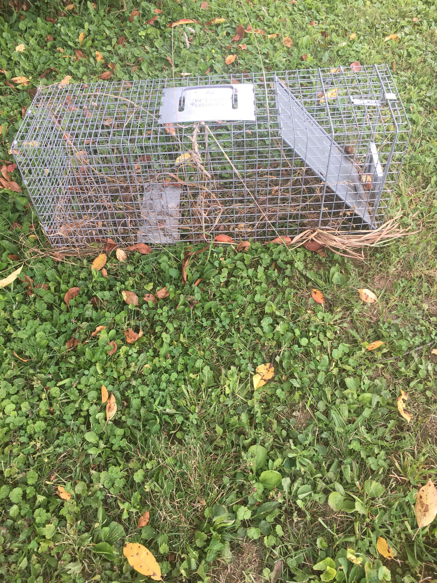 Trapping Cage Large