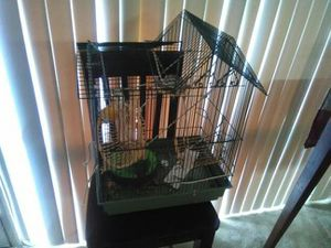 Bird Cage for Sale in Washington, DC
