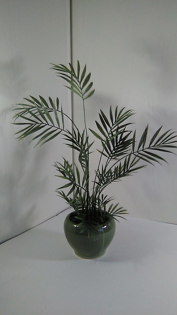 Small Artificial Bamboo Plant For Sale In Avondale Az Offerup