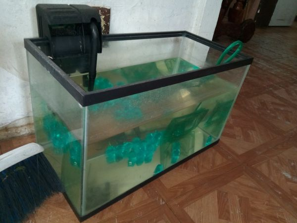 Fish Tank With Filter For Sale In San Jacinto Ca Offerup