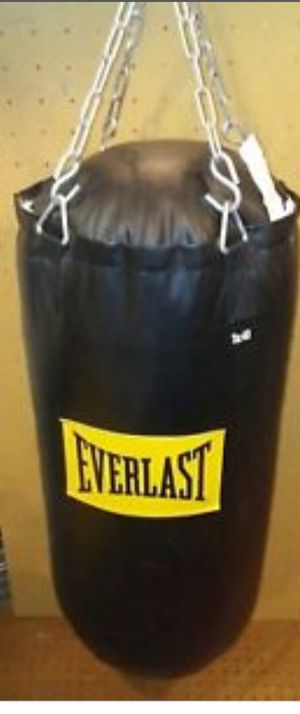 Everlast 40lb sparing/punching bag w/gloves for Sale in Seattle, WA