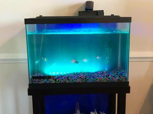 20 gallon Aquarium Tank and Stand for Sale in Sykesville, MD