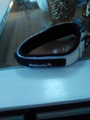 Large dog collar for Sale in Casselberry, FL