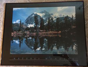 Natures wonders (framed ) for Sale in Arlington, VA