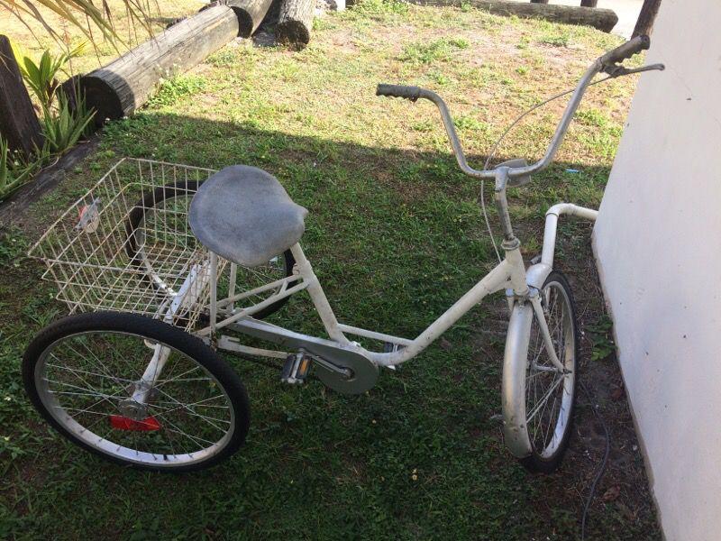 MIAMI SUN ☀️ 3 wheels bike works great