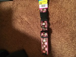 Dog collars for Sale in Odenton, MD