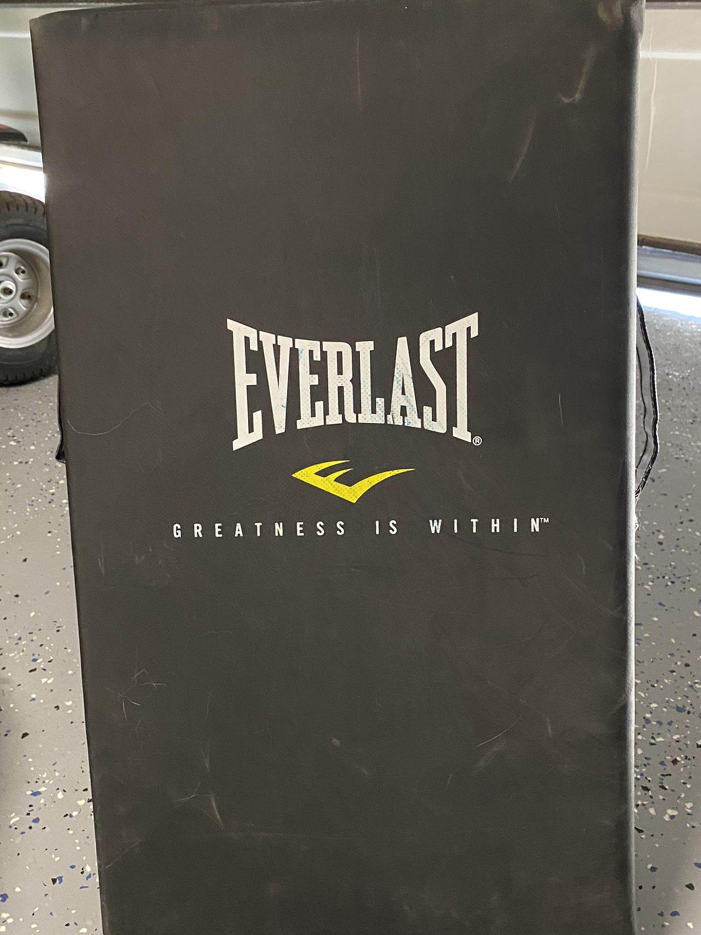 Everlast Strike Shield