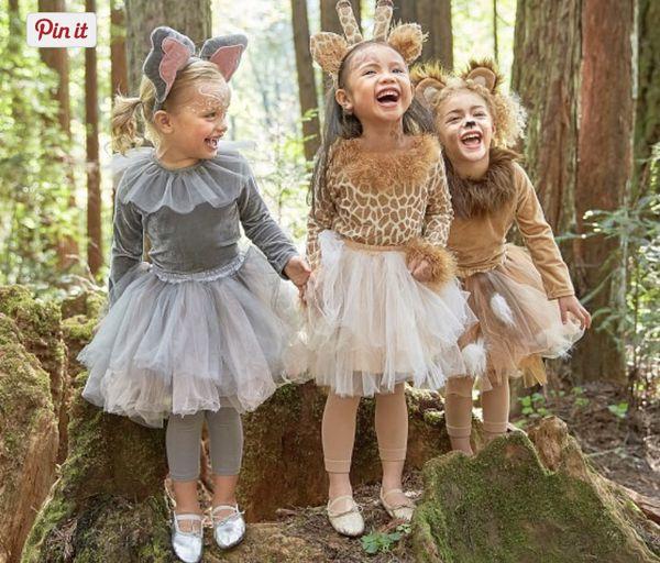 4 People Halloween Costumes Girls.Little Girls Giraffe Halloween Costume From Pottery Barn For Sale In Warwick Ri Offerup