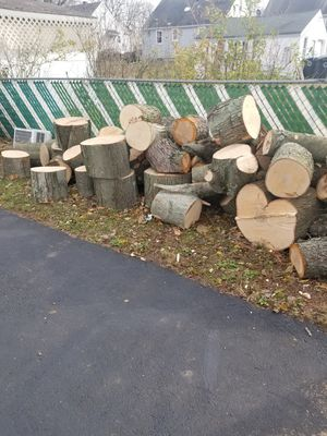 Free firewood for Sale in Clementon, NJ