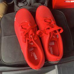 Puma Ferrari Shoes Thumbnail