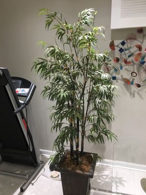 Faux House plant for Sale in Herndon, VA