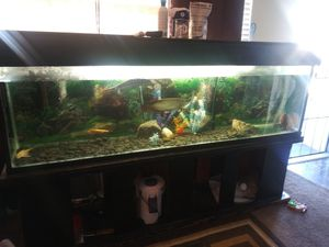 150 gallon fish tank for Sale in Hawthorne, CA