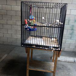 Big Bird Cage Thumbnail