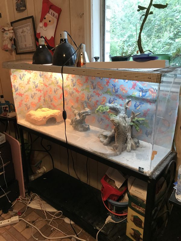 Large Reptile Terrarium For Sale In New Caney Tx Offerup