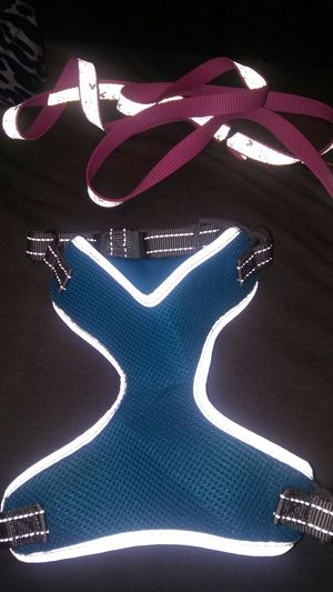 Dog harness and leash sz small for Sale in Columbus, OH