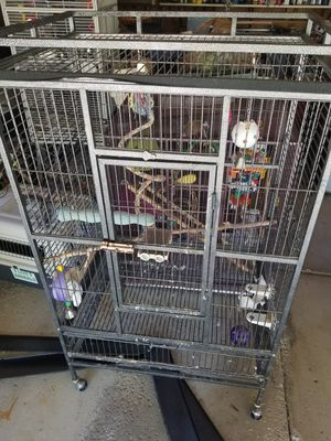 New and Used Pet supplies for Sale in Buffalo, NY - OfferUp