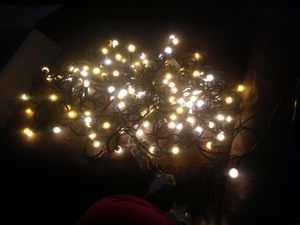2 stands of lights $8 for both for Sale in Sumas, WA