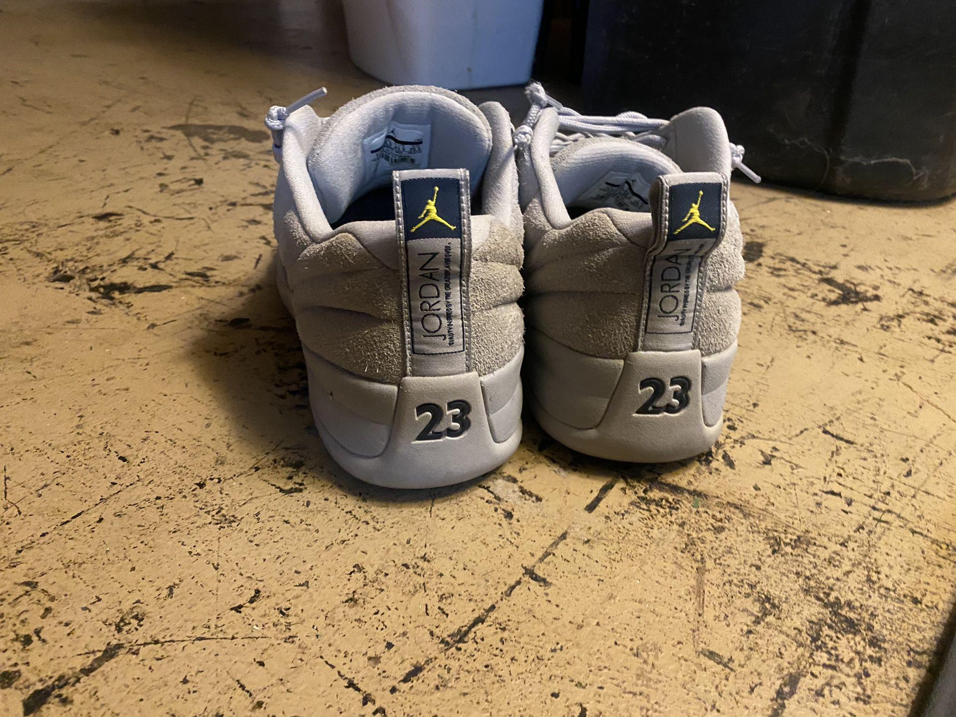 11.5 Suede Jordan 12 Low Top