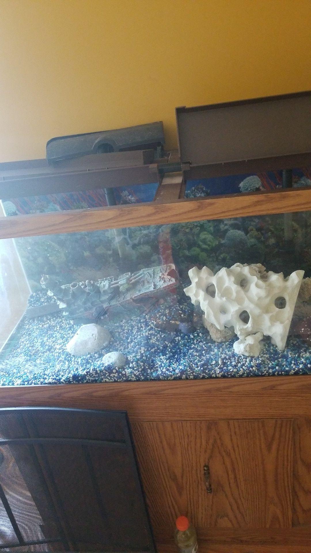 75 gallon fresh water aquarium